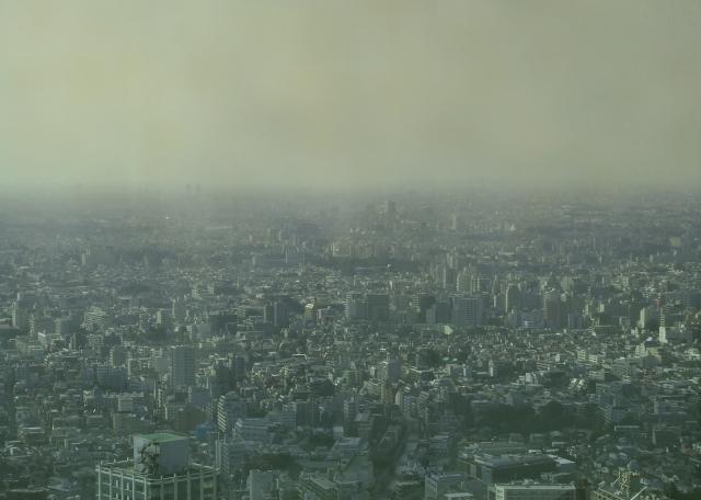 大気汚染,花粉