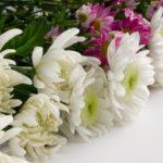 遺品整理用語集:『葬儀の別れ花』